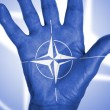 Türkischer Geheimdienst leakte Putsch-Plan, will CIA jetzt Bürgerkrieg?