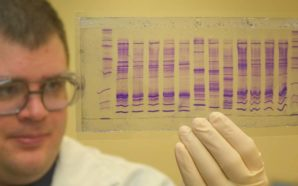 cbp_chemist_reads_a_dna_profile-1375